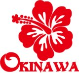 ハイビスカス沖縄04