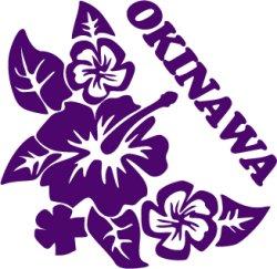 画像1: ハイビスカス沖縄05