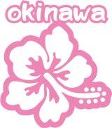 ハイビスカス沖縄06